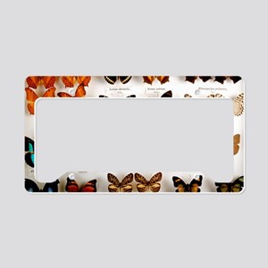Exotic butterfly collection License Plate Holder