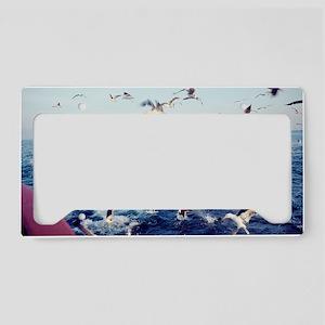 Seagulls License Plate Holder