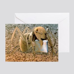SEM of ant holding a microchip Greeting Card