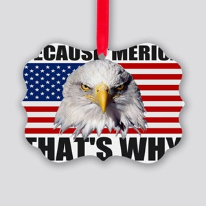 Because MERICA Thats Why US Flag  Picture Ornament