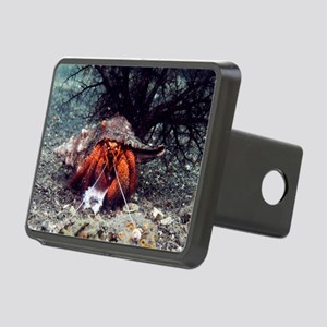 Shell-breaking hermit crab Rectangular Hitch Cover
