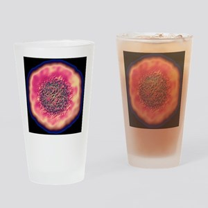 Foot and mouth disease virus Drinking Glass