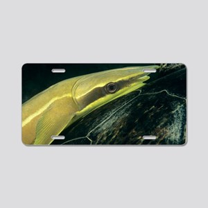 Slender remora Aluminum License Plate
