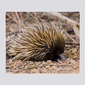 Short-beaked echidna Throw Blanket