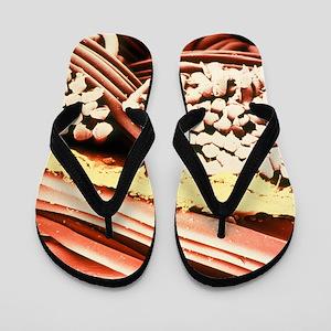 8a3fa91f425d False-colour SEM of the fabric Gore-Tex Flip Flops