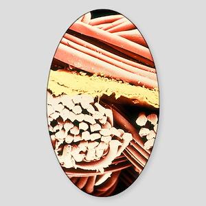 False-colour SEM of the fabric Gore Sticker (Oval)