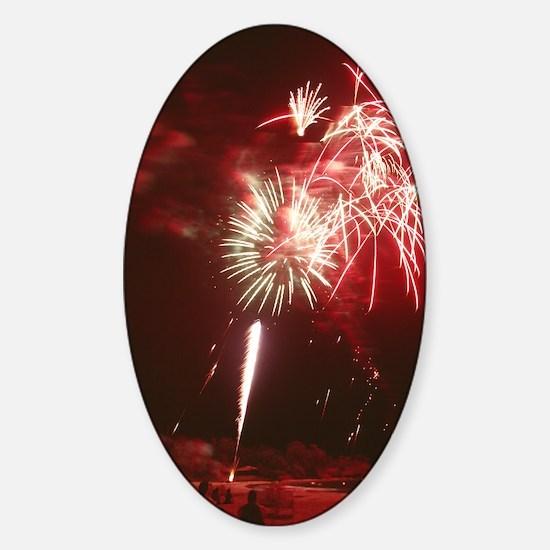 Fireworks display Sticker (Oval)