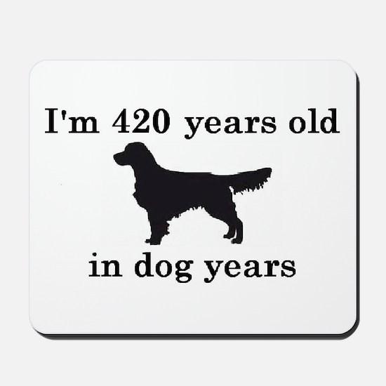 60 birthday dog years golden retriever 2 Mousepad