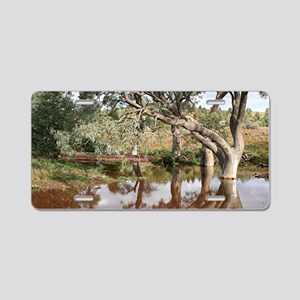 Reflections: Creek and gumt Aluminum License Plate