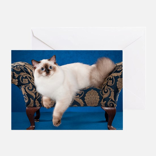 Ragdoll Wall Calendar Greeting Card