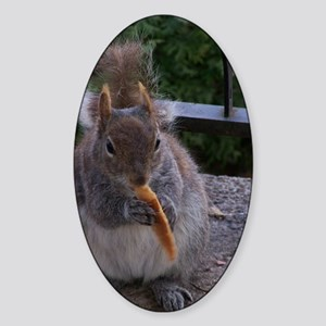 Cheetos for the squirrel  Sticker (Oval)