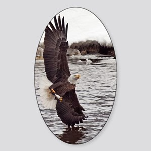 Striking Eagle Sticker (Oval)
