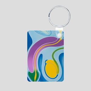 Artwork of male genitalia  Aluminum Photo Keychain