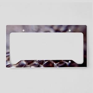 Snake scales License Plate Holder