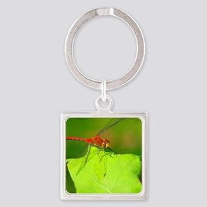 HALF-BANDED TOPER DRAGONFLY Square Keychain