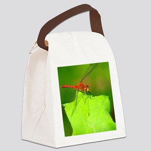 HALF-BANDED TOPER DRAGONFLY Canvas Lunch Bag