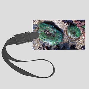 Snakelocks anemones Large Luggage Tag