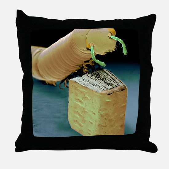 Smallest book and millipede, SEM Throw Pillow