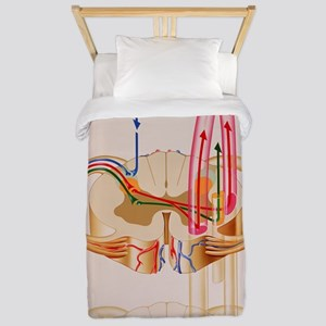 Artwork showing pain pathways in spinal Twin Duvet