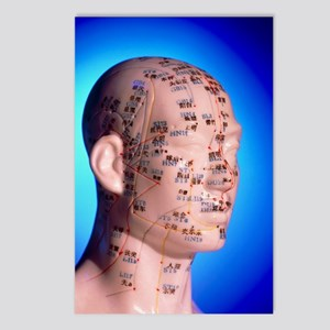 Acupuncture chart on a ca Postcards (Package of 8)