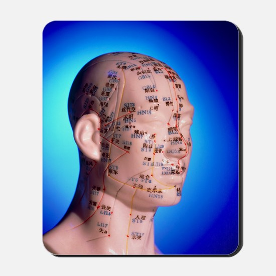 Acupuncture chart on a cast of a head an Mousepad