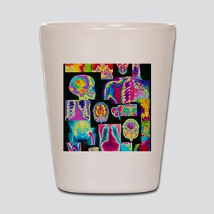 Assortment of coloured X-rays and body  Shot Glass
