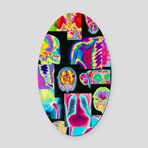 Assortment of coloured X-rays and  Oval Car Magnet