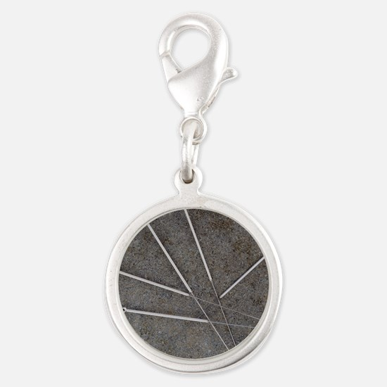 Acupuncture needles Silver Round Charm