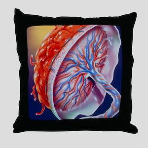 Illustration of the human placenta Throw Pillow