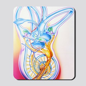 Inner ear Mousepad