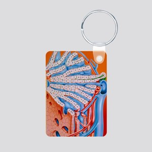 Illustration of the struct Aluminum Photo Keychain