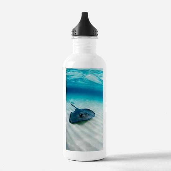 Southern stingray Water Bottle