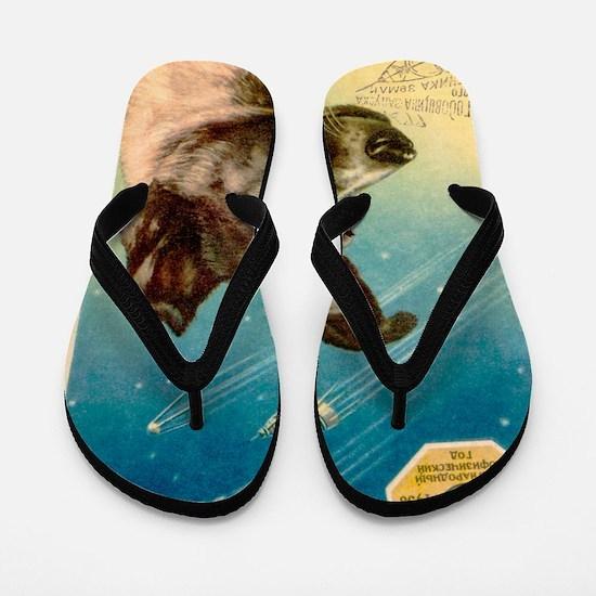 Laika the space dog postcard Flip Flops