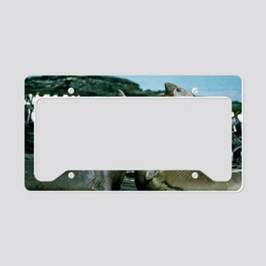 Southern elephant seals License Plate Holder