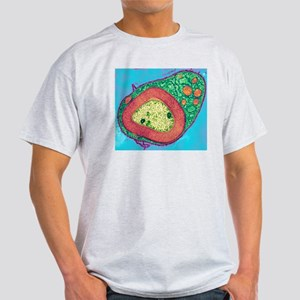 Myelinated nerve, TEM Light T-Shirt