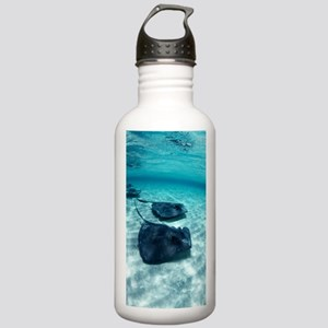 Southern stingrays Stainless Water Bottle 1.0L