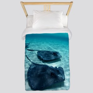 Southern stingrays Twin Duvet