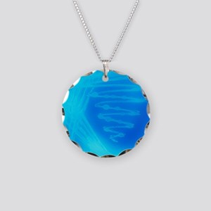 Bacterial culture Necklace Circle Charm