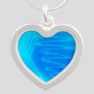 Bacterial culture Silver Heart Necklace