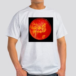 Bacterial colonies Light T-Shirt