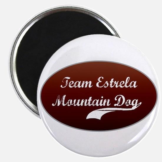 Team Estrela Magnet