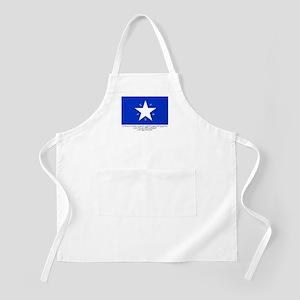 Texas Flag with Declaration BBQ Apron