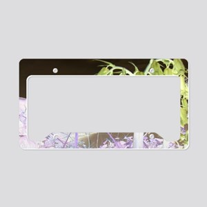 Color Changed Bluebells License Plate Holder