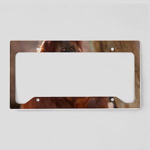 (19) Orang Mother  Child 7372 License Plate Holder