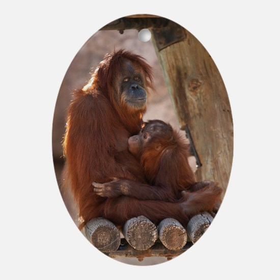 (10) Orang Mother  Child 7372 Oval Ornament