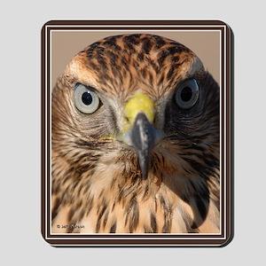 Redtail Hawk Mousepad