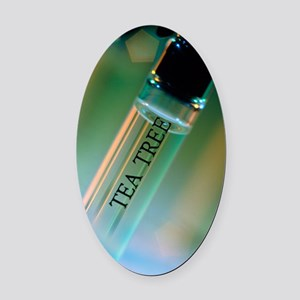 Bottle of essential oil from tea t Oval Car Magnet