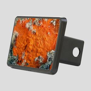 Sponge Rectangular Hitch Cover
