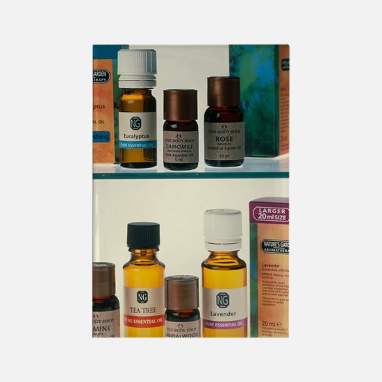 Bottles containing aromatherapy o Rectangle Magnet