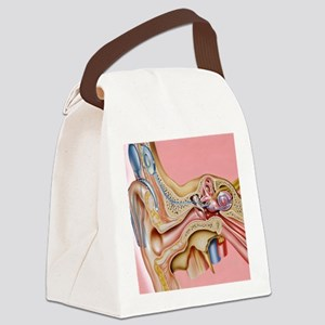 Cochlear implant, artwork Canvas Lunch Bag